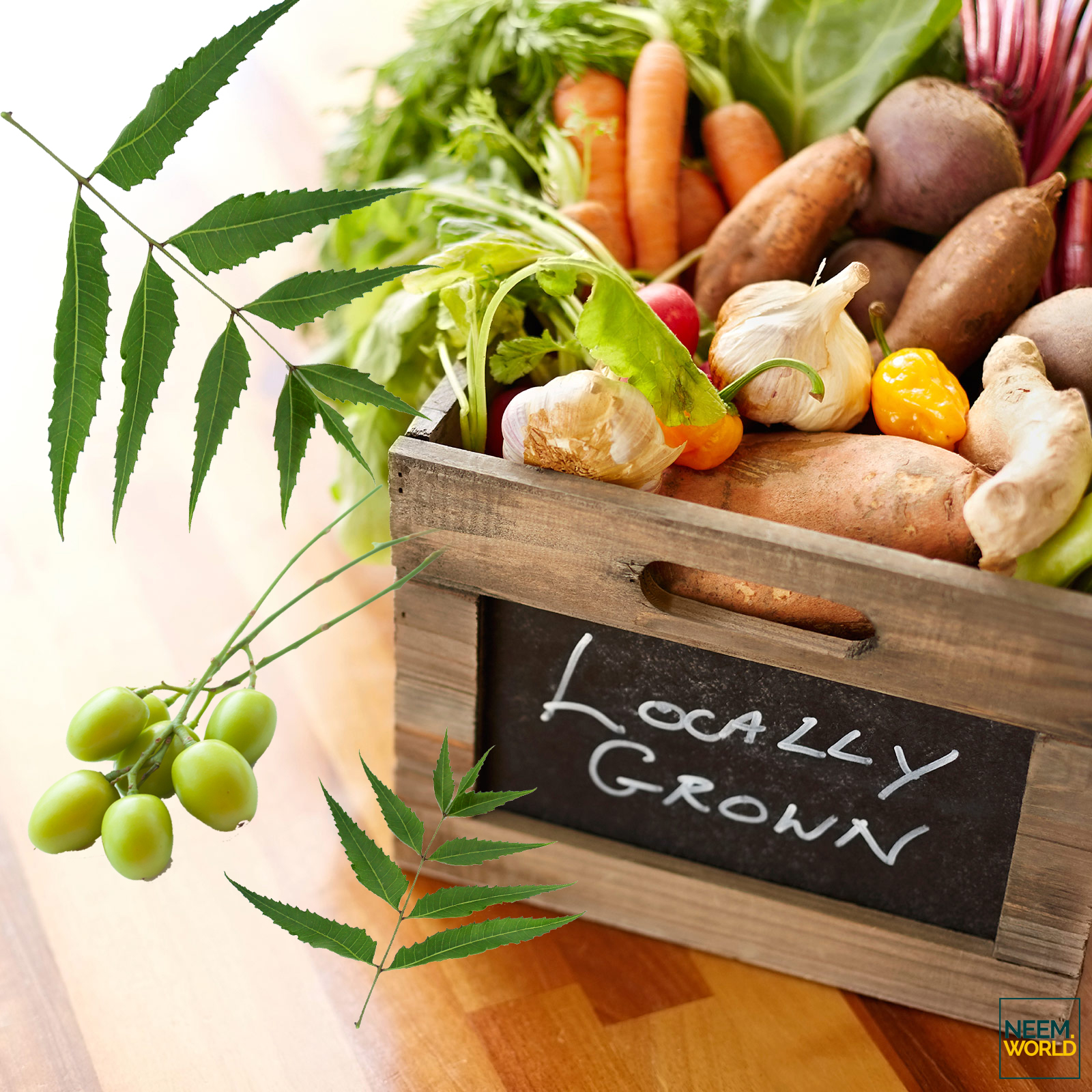 Homegrown vegetables in wooden crate at kitchen