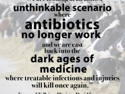 The Danger of Antimicrobial Resistance