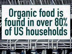 Do You Have Organic in Your House?