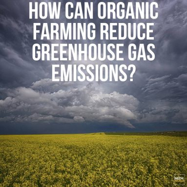 Act on Climate with Organics