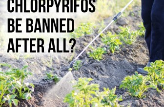 New Bill to Ban Chlorpyrifos