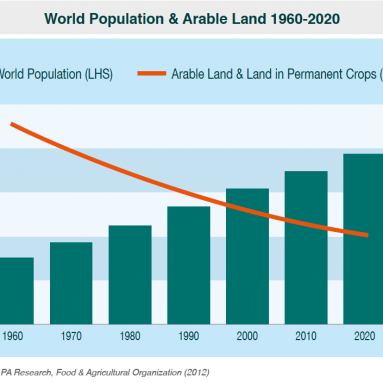 World Population and Arable Land 1996 – 2020 Chart