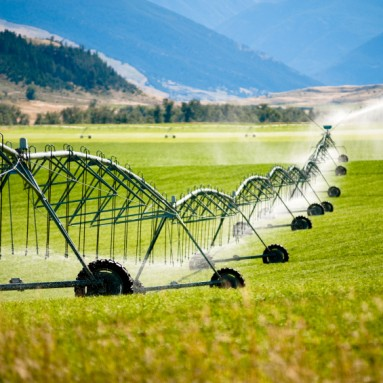 Fertilizers – The Good, the Bad and the Ugly