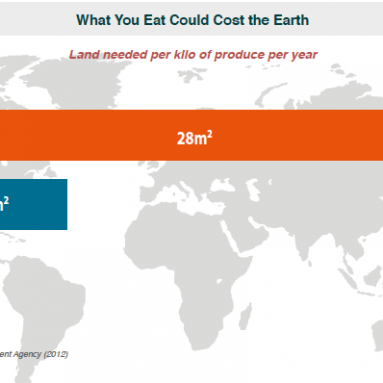 What You Eat Could Cost the Earth – Chart