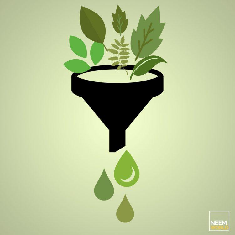 neem as biofuel