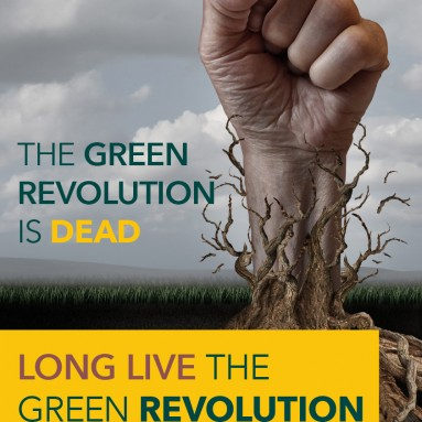 The Green Revolution and Why We Need A New One