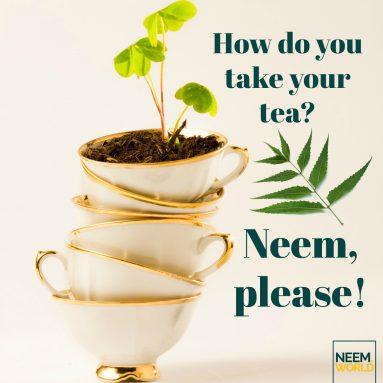 Benefits of Neem Tea