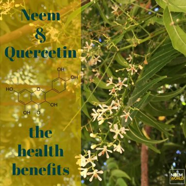 Neem Compound Profile: Quercetin