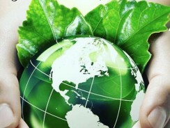 Sustainably Feed the World with Organic Farming