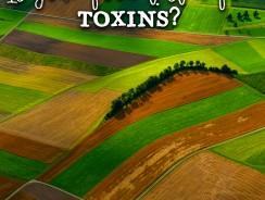 Pesticide Testing