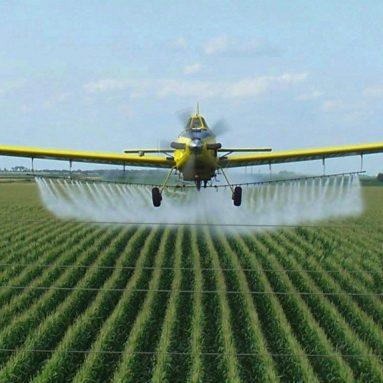 Reducing Pesticide Use
