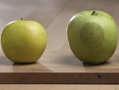 GMO Food…How Do you Know?