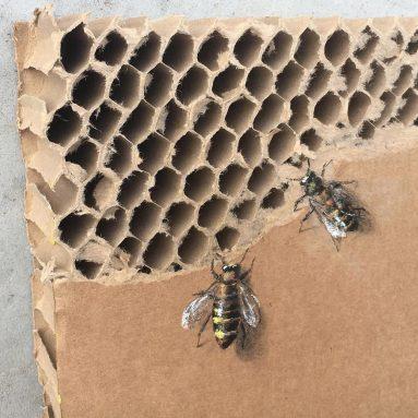 Celebrate All Pollinators