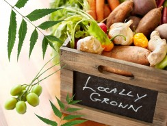 Many Benefits of Organic