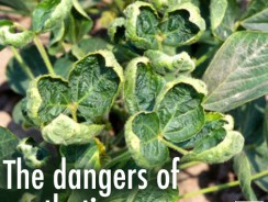Agrochemical Drifts