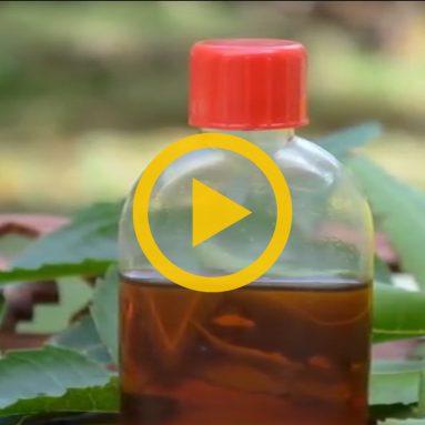Neem Oil for the Skin
