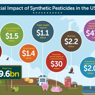 Financial Impact of Synthetic Pesticides in the US, 2014