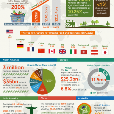 The Organic Market Infographic
