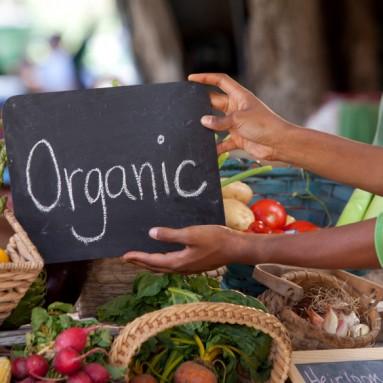 Push-Pull Factors for Organics