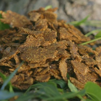 Neem Cake – An Organic Byproduct that Nourishes the Soil